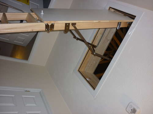 Wooden Ladder with Plastic Trim